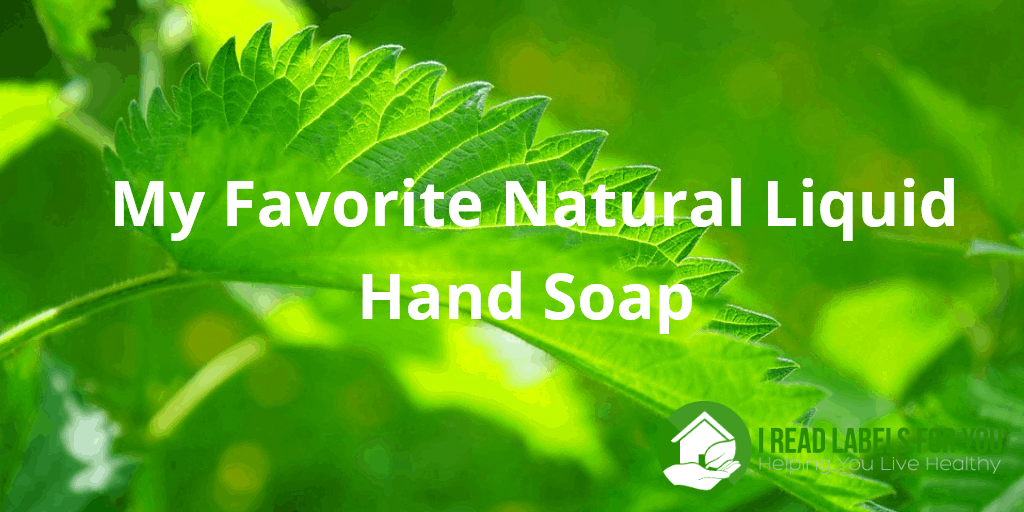 My Favorite Natural Liquid Hand Soap. Photo of a green leaf.
