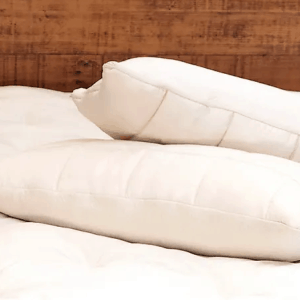 Naturepedic Adjustable pillow